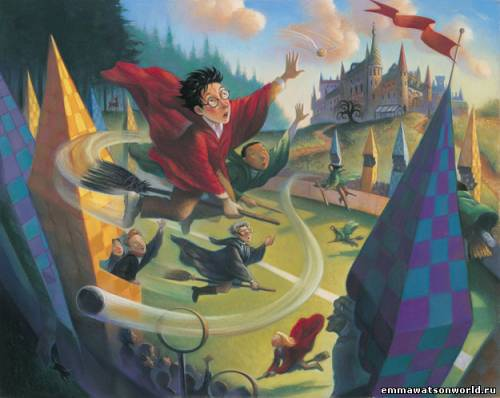 Гарри Поттер на футбольном поле