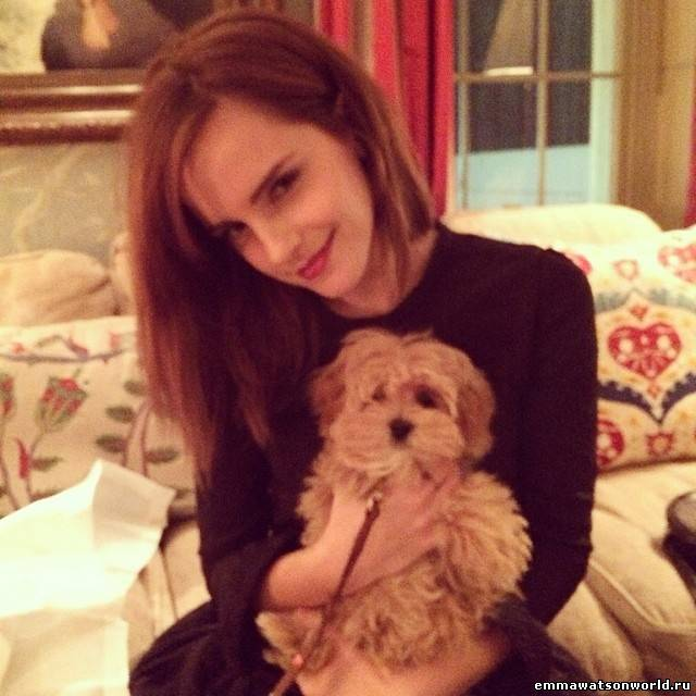 Фото Эммы с собачкой Каролин Сибер